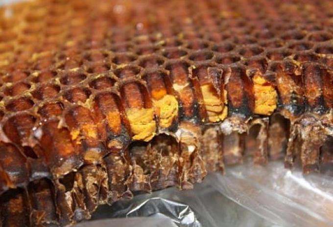 Перга Пчелиная От Алкоголизма