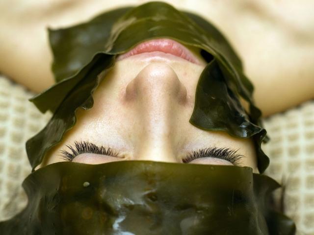 Маски из водорослей ламинария для лица при беременности