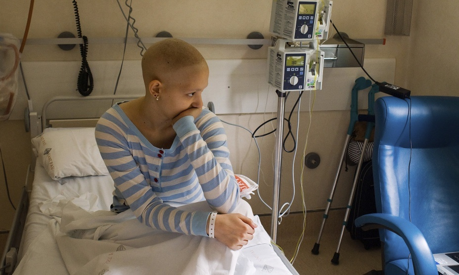 Лечение онкологии настойкой личинок восковой моли