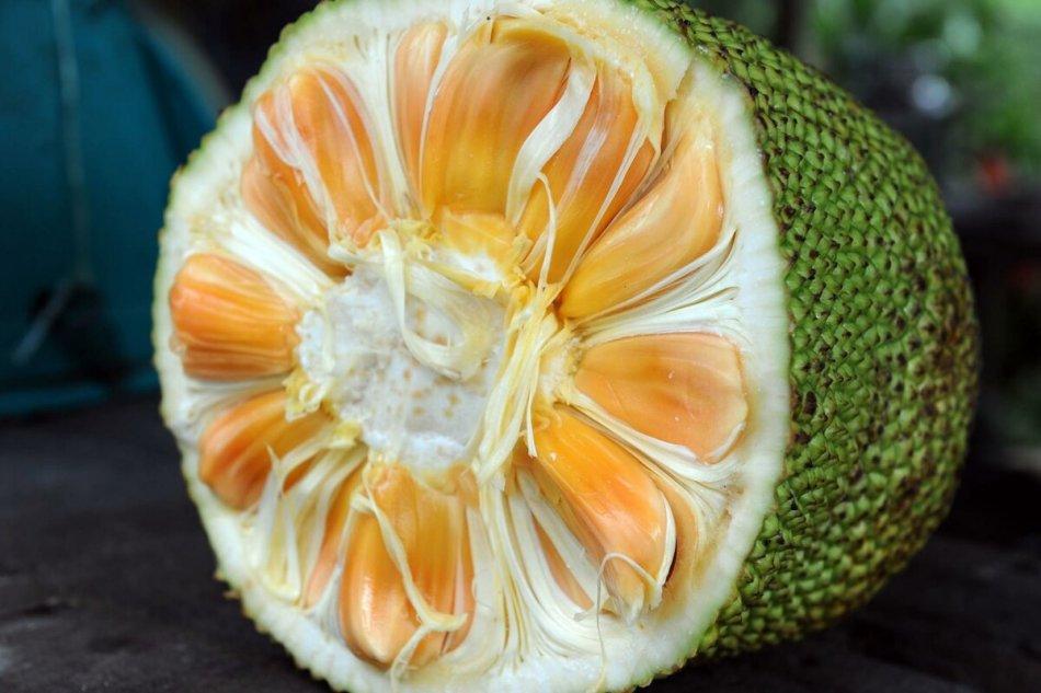 азиатские фрукты фото с названиями история самой обычной