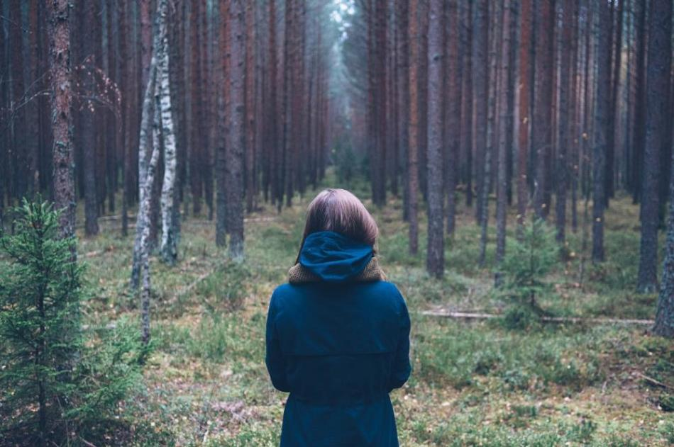 Перед тем, кто во сне заблудился в лесу, наяву предстанет ряд препятствий.
