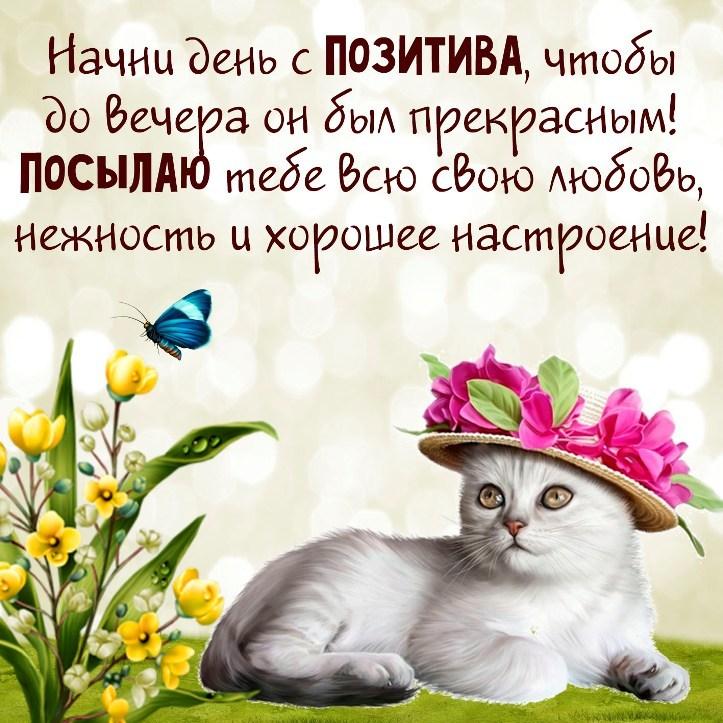 Красивая позитивная открытка хорошего дня
