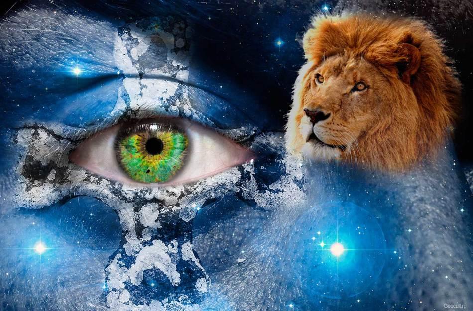 Львы целеустремленные и эмоциональные