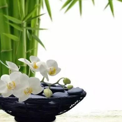 Поставьте свежие цветы
