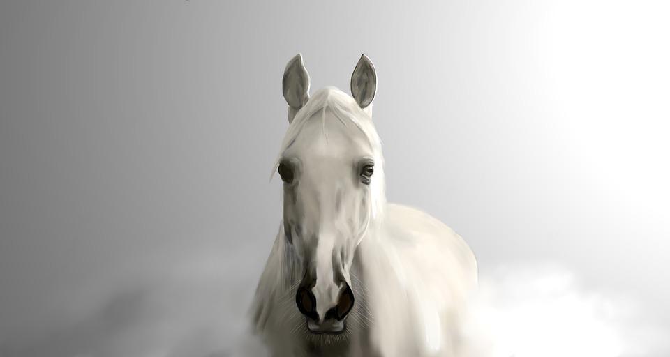 Сонник: конь или лошадь