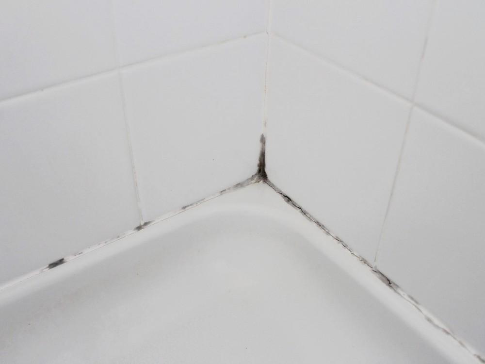 Сырость, плесень и гибок - главные причины появления мокриц в ванной.