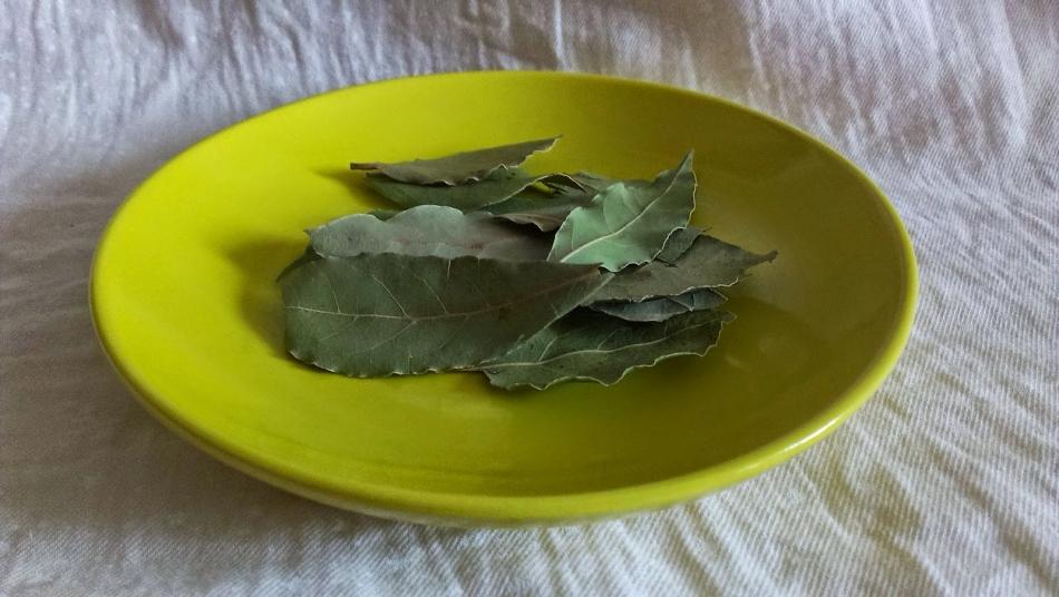 Можно при окуривании лавровым листом переложить растение в тарелку