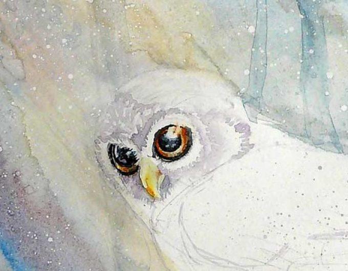 11c78f64a4c21b1833b9352dc83b54ff Как рисовать сову карандашом поэтапно для начинающих и детей? Как рисовать по клеточкам сову, красками?