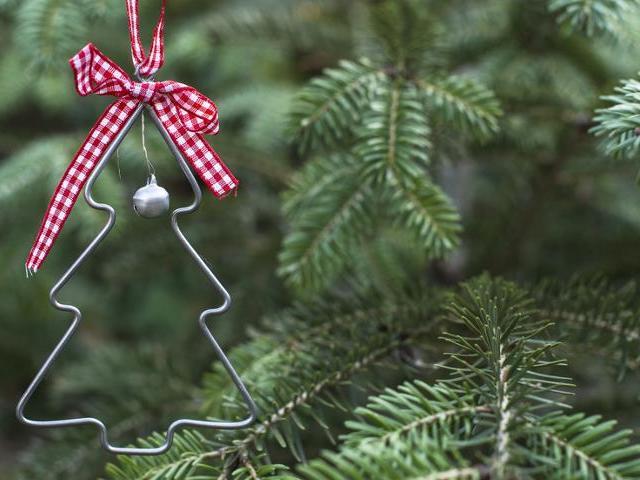 Как сохранить новогоднюю елку дома дольше? Как сделать, во что ...