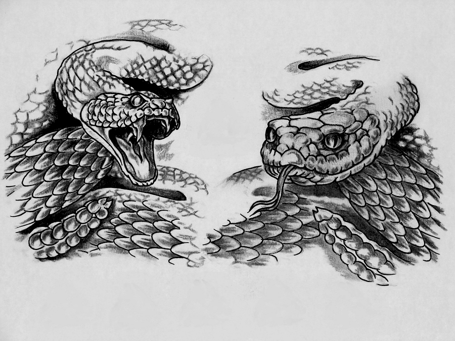 Эскиз реалистичной змеи