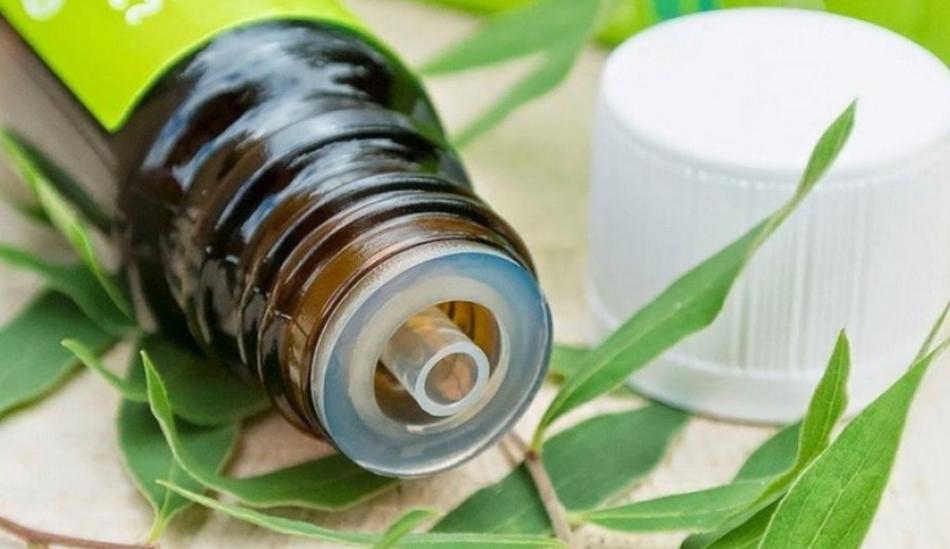 Масло чайного дерева эффективно снизит потоотделения ног и нейтрализует запах пота