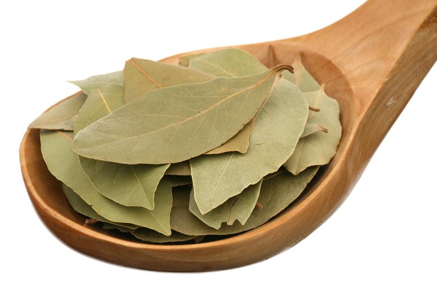 Считалось, что даже небольшое количество лавровых листьев способно очистить энергетику помещения