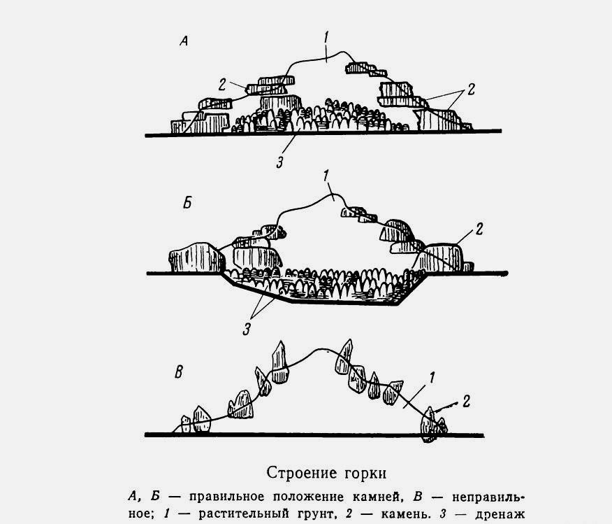 Схема простой альпийской горки, правильное и неправильное обустройство горки