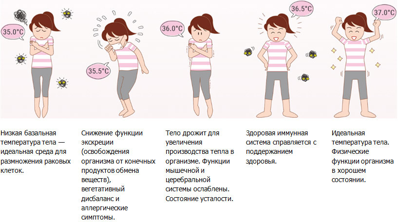 Показатели организма