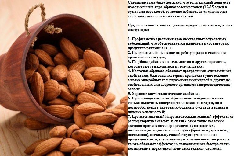 Ядра абрикосовых косточек очень полезны