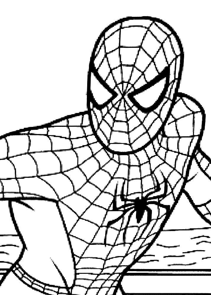 самых картинки разукрашки человека паука подлещика ловят