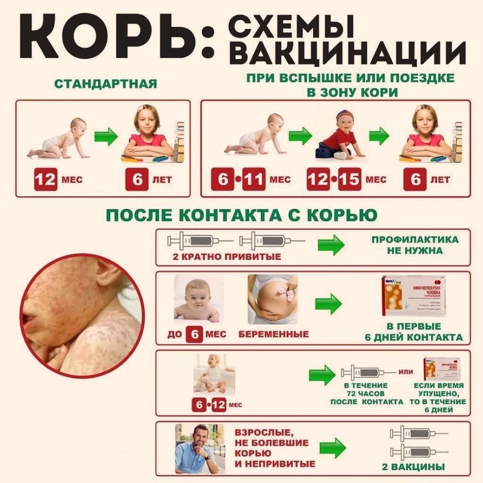Таблица проведения вакцинации
