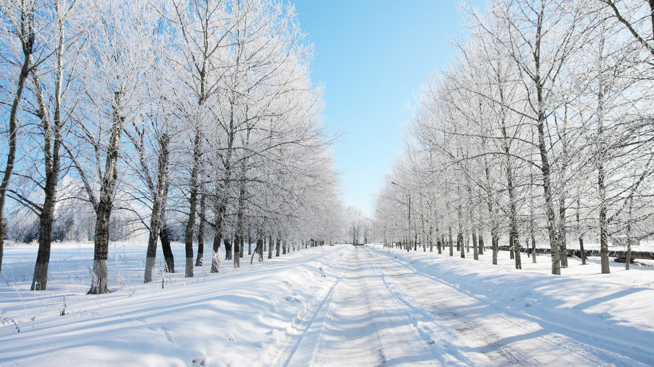 Зима в январе