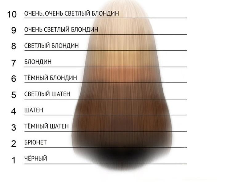 Уровни глубины тона волоса человека