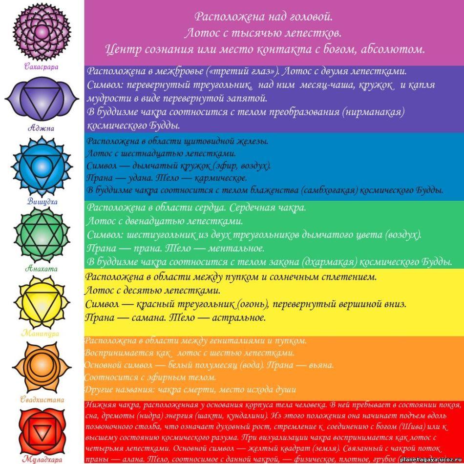 Таблица с описанием расположения чакр человека, их цветов