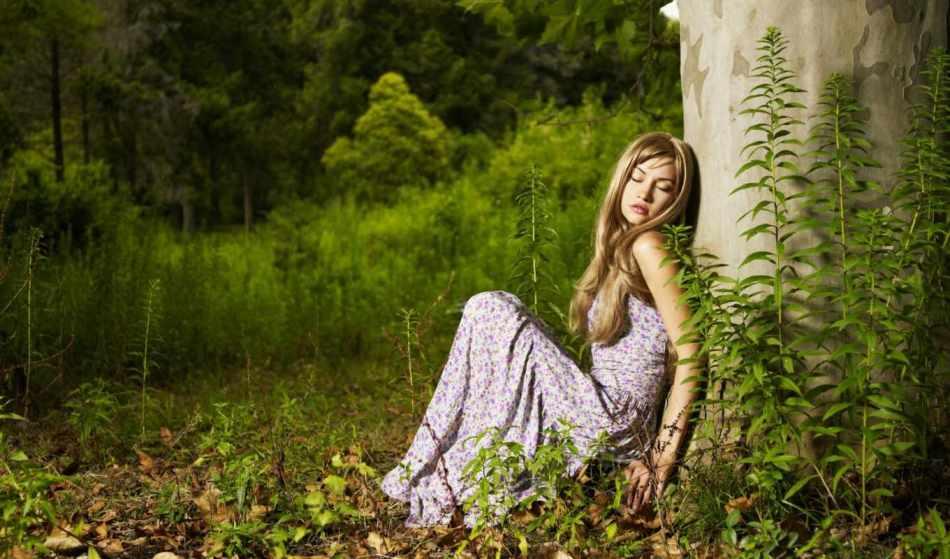 Энергия деревьев используется во многих магических ритуалах