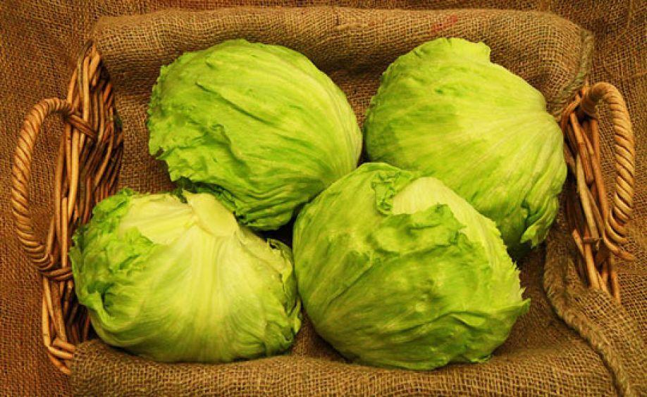 Кочанчики салата