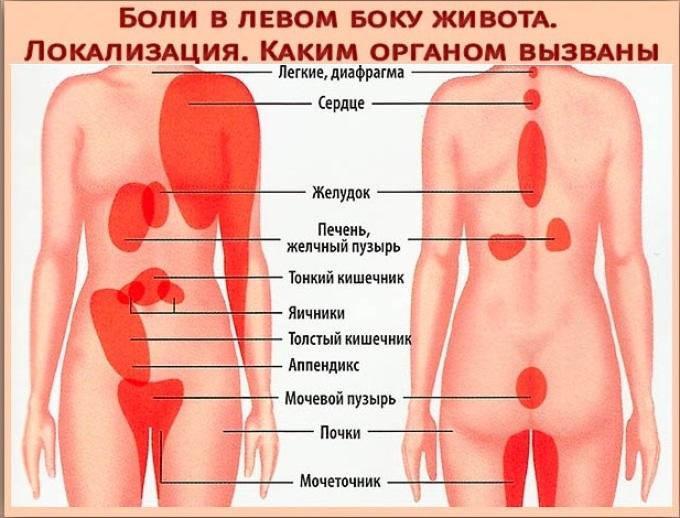Органы, которые причиняют боль слева