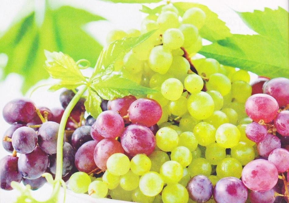 Виноград полезен при беременности