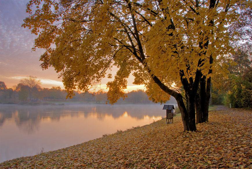 Красивый ноябрь