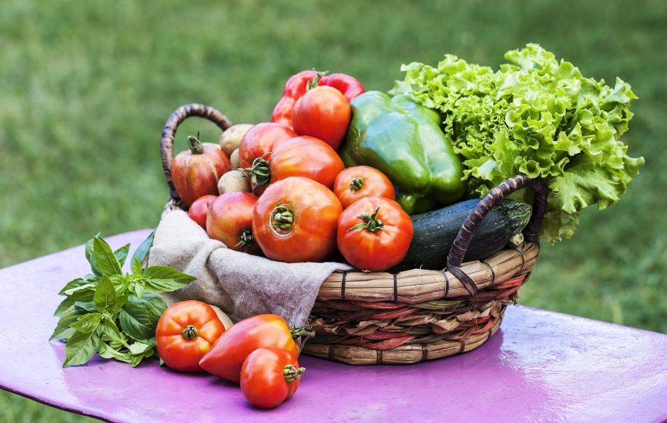 Овощи в августе