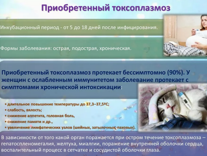 Редко диагностируемые причины повышенной температуры до 37,5 и выше: токсоплазмоз
