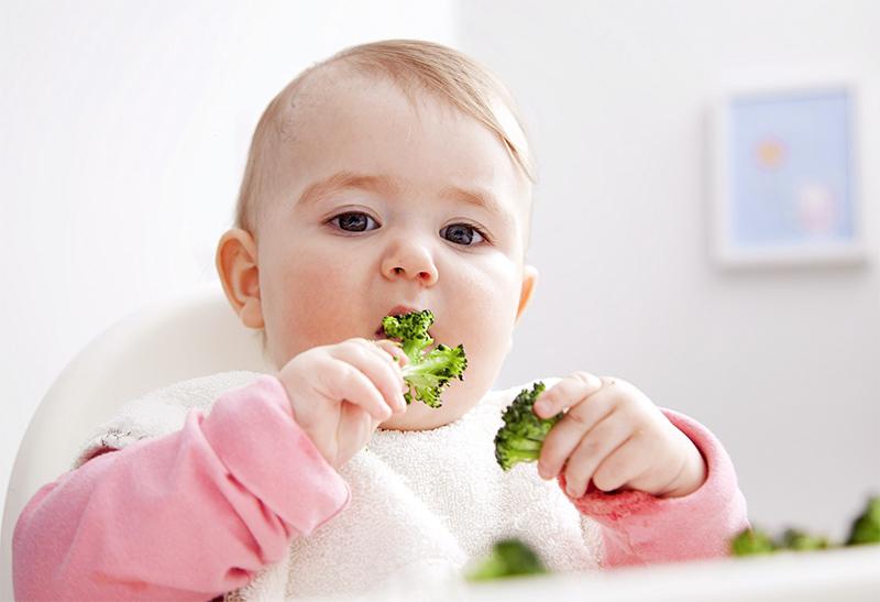 Многие дети любят капусту брокколи