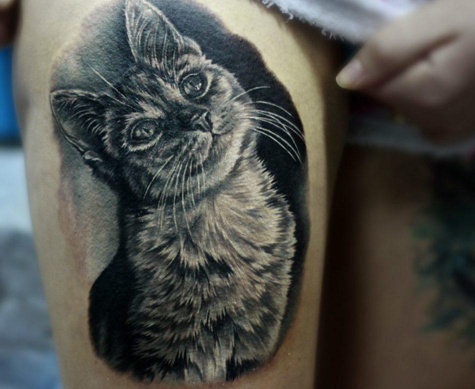 Тату кошка в реалистичном стиле