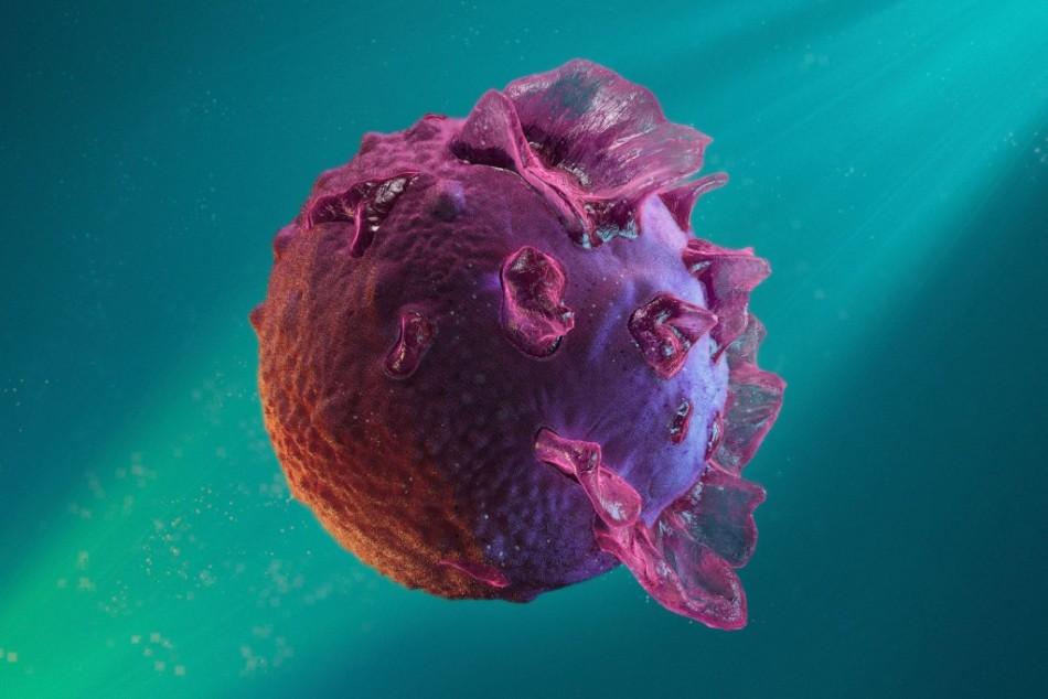 Вирус эпштейн барра