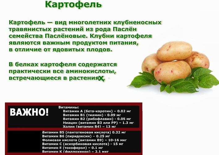 Какую Картошку Есть При Диете. 💛Как правильно употреблять картофель при похудении