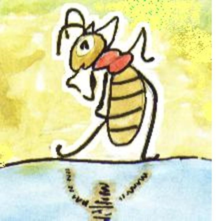Детские рисунки черепахи и муравья