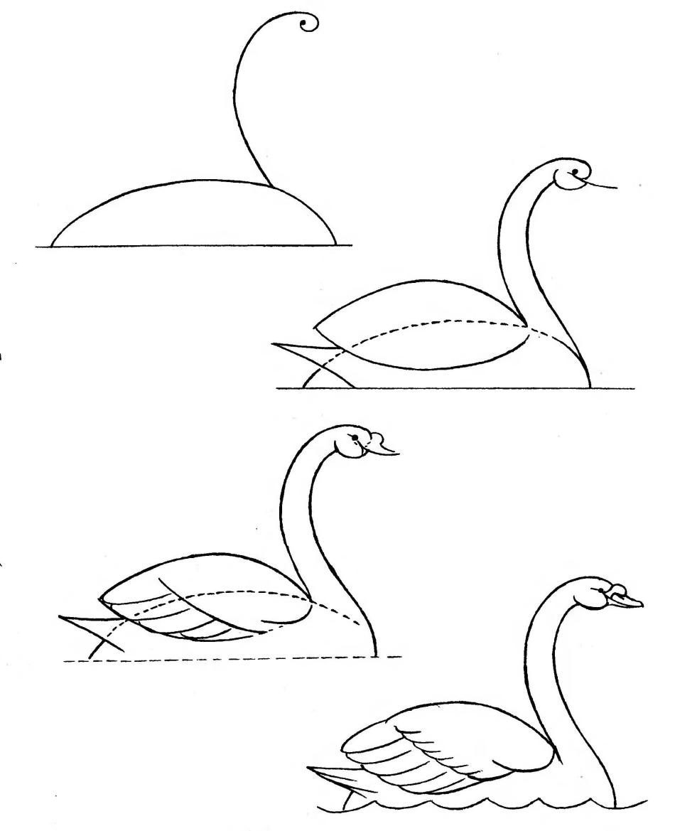 легкие картинки лебедя сети интернет