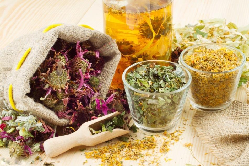 Применение трав при гриппе и орви