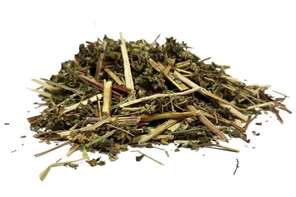 Как приготовить из таволги настойку, отвар, мазь для лечения различных недугов?