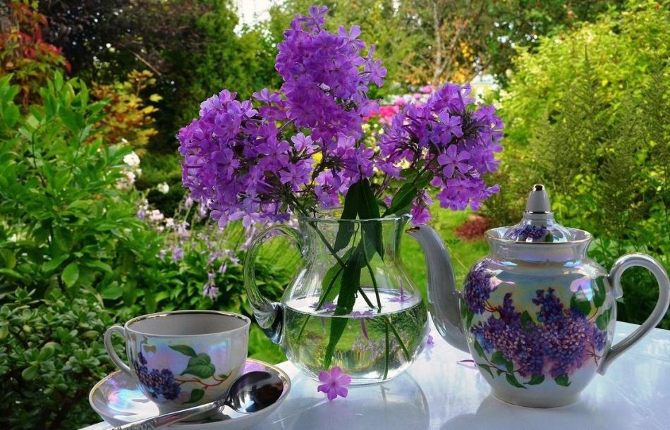 Чай из полевых трав