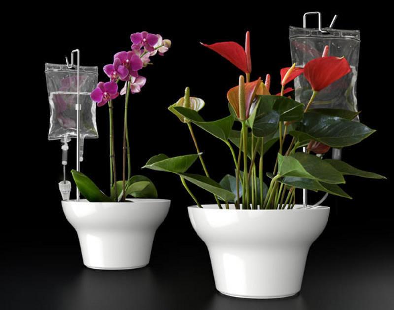 Капельница для растений