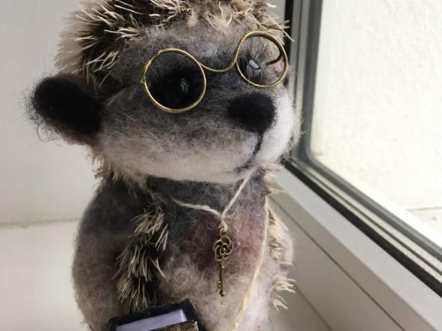 Фото ежа в очках