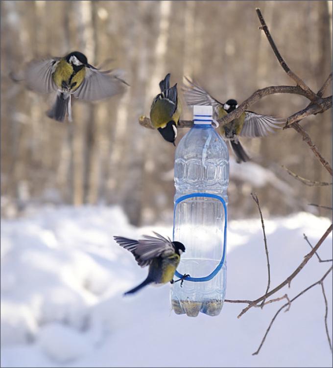 kormushka-s-yarkim-vhodom Кормушка для птиц из пластиковой бутылки