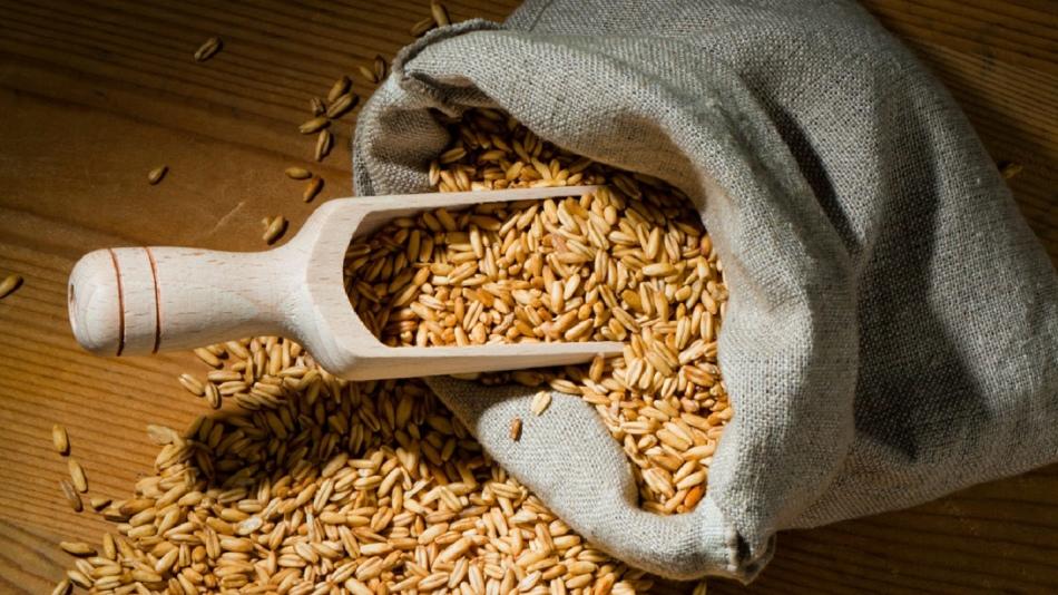 Овсяные зерна - кладезь витаминов и минералов