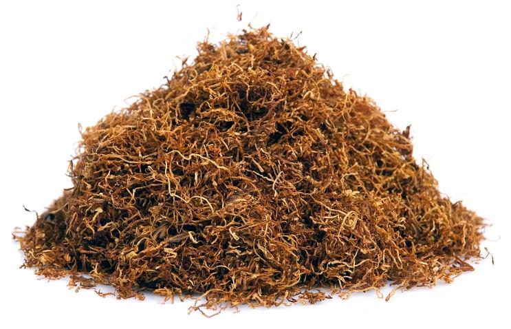 Мокриц можно травить табаком, красным перцем и содой.
