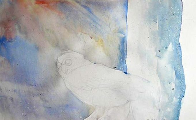477b8ee4da30705b9612b858a010e7bc Как рисовать сову карандашом поэтапно для начинающих и детей? Как рисовать по клеточкам сову, красками?