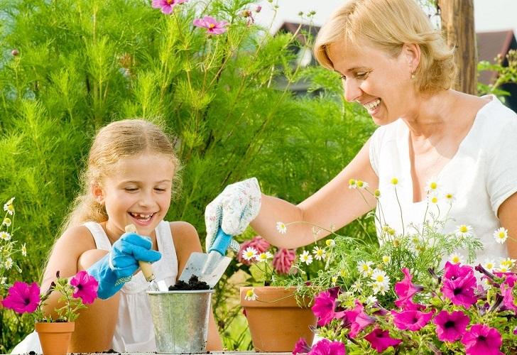 Займитесь пересадкой или посадкой цветов и растений