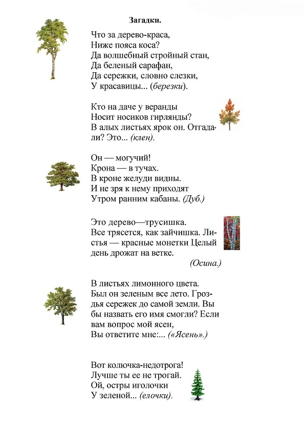 организме дерево загадок картинки ним контакт поддерживаем