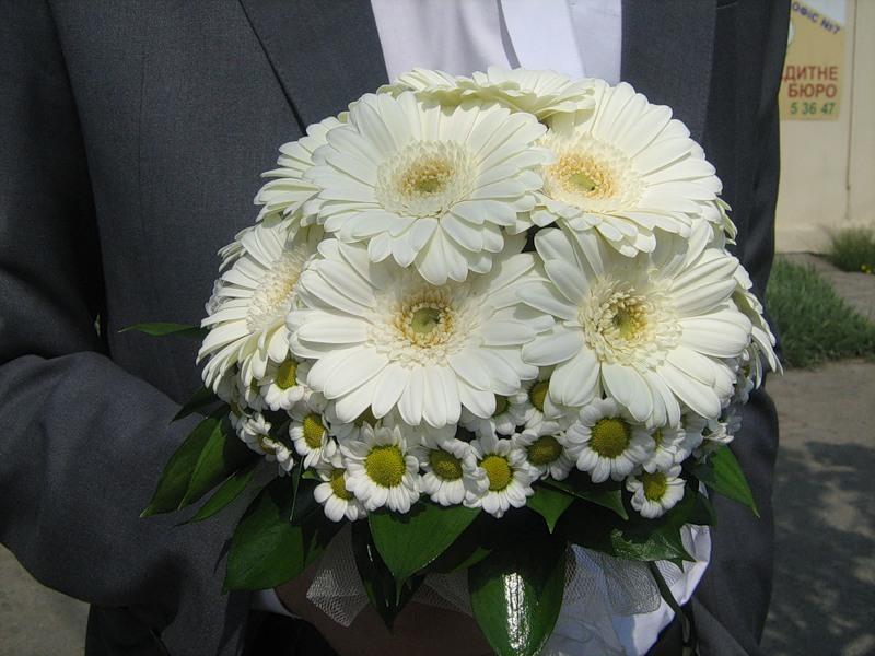 Букет невесты из белых хризантем и гербер