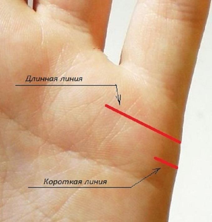 Пример длинной и короткой линии привязанностей на доминантной руке